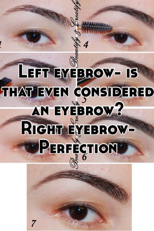 Left Eyebrow Is That Even Considered An Eyebrow Right Eyebrow