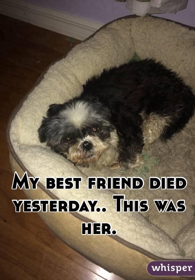 My best friend died yesterday.. This was her.