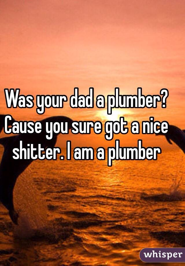 Was your dad a plumber? Cause you sure got a nice shitter. I am a plumber