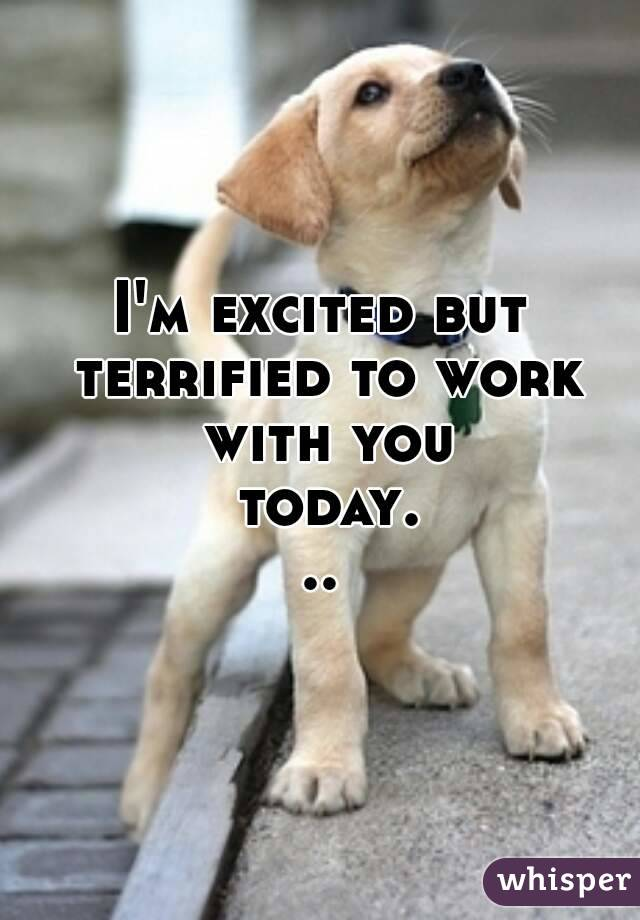 I'm excited but terrified to work with you today...