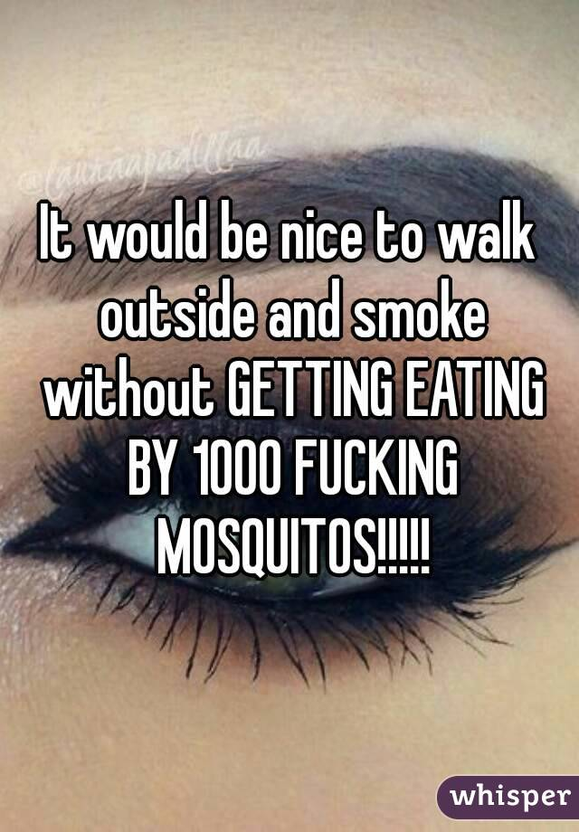 It would be nice to walk outside and smoke without GETTING EATING BY 1000 FUCKING MOSQUITOS!!!!!