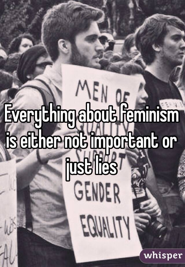 Everything about feminism is either not important or just lies
