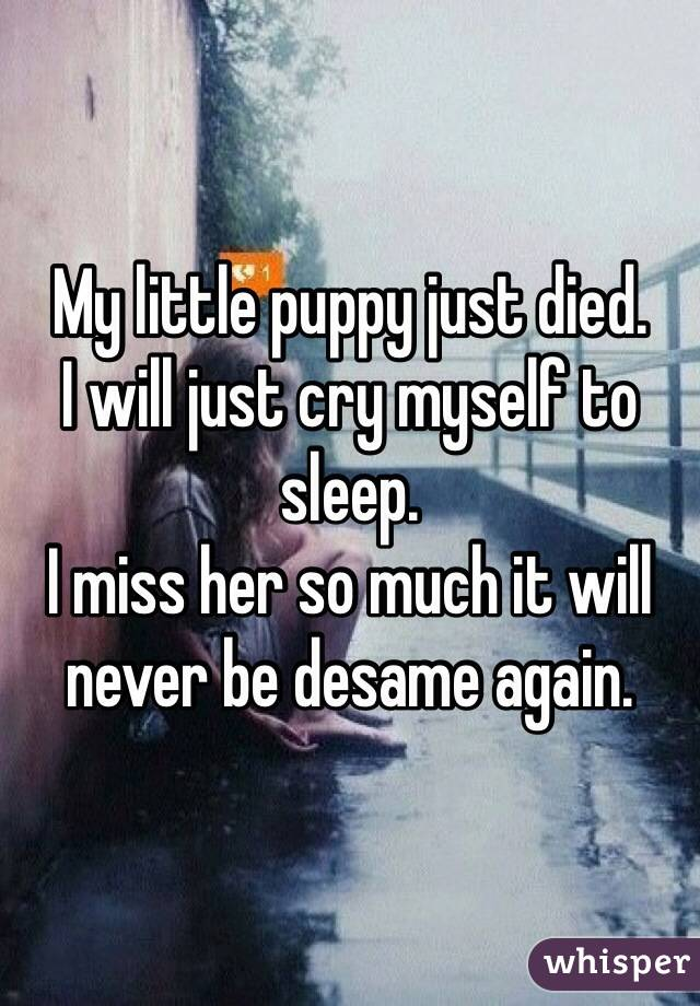 My little puppy just died. I will just cry myself to sleep. I miss her so much it will never be desame again.