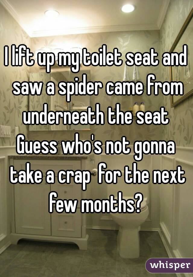 I lift up my toilet seat and saw a spider came from underneath the seat  Guess who's not gonna take a crap  for the next few months?