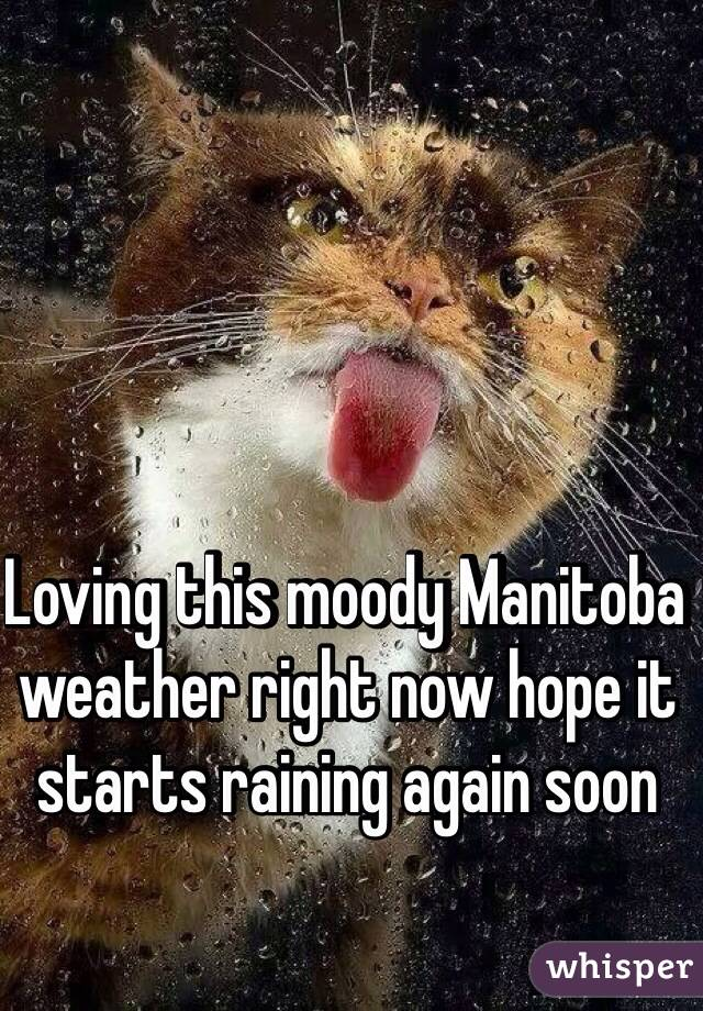 Loving this moody Manitoba weather right now hope it starts raining again soon