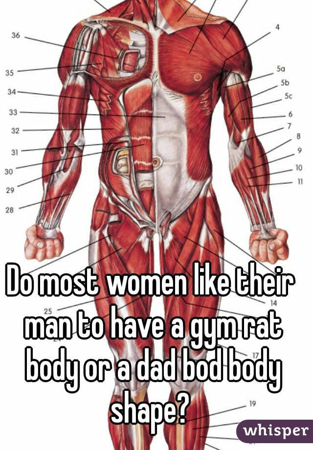 Do most women like their man to have a gym rat body or a dad bod body shape?