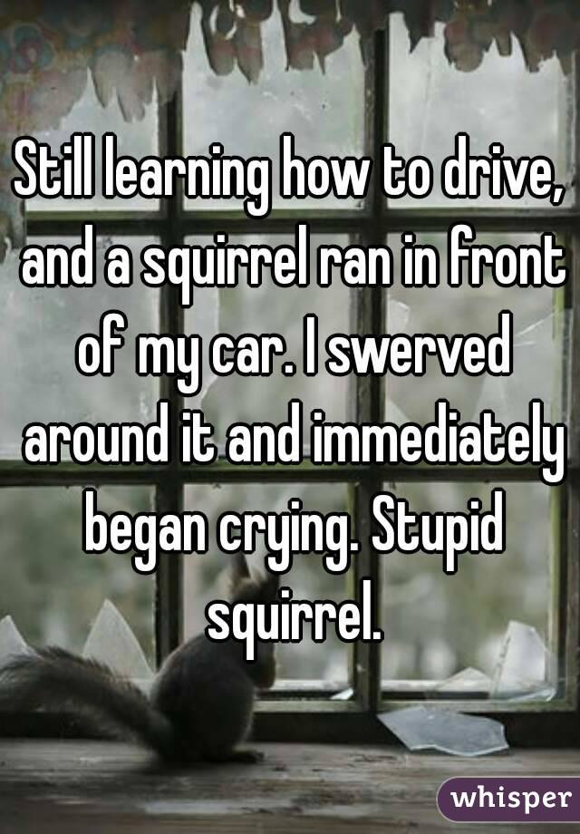 Still learning how to drive, and a squirrel ran in front of my car. I swerved around it and immediately began crying. Stupid squirrel.