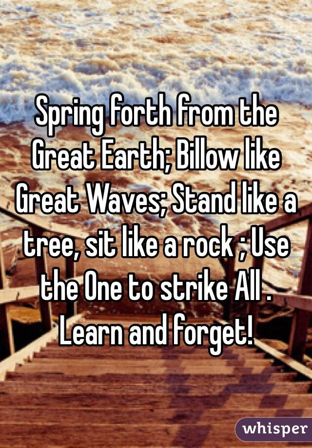 Spring forth from the Great Earth; Billow like Great Waves; Stand like a tree, sit like a rock ; Use the One to strike All . Learn and forget!