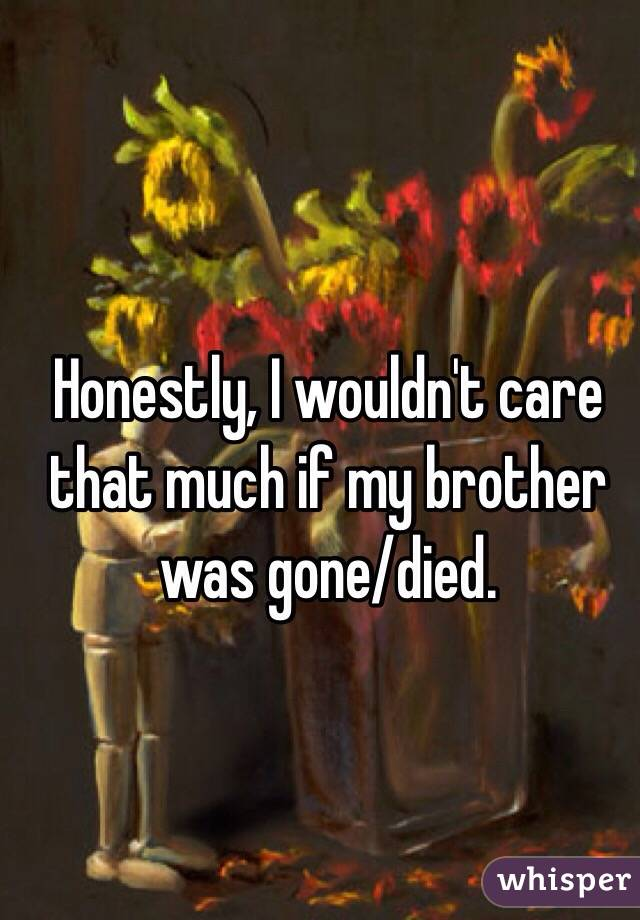 Honestly, I wouldn't care that much if my brother was gone/died.