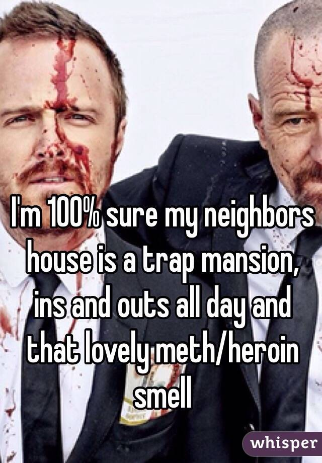 I'm 100% sure my neighbors house is a trap mansion, ins and outs all day and that lovely meth/heroin smell