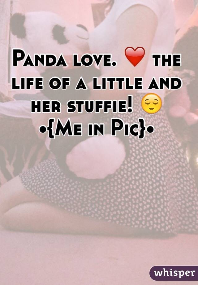 Panda love. ❤️ the life of a little and her stuffie! 😌 •{Me in Pic}•