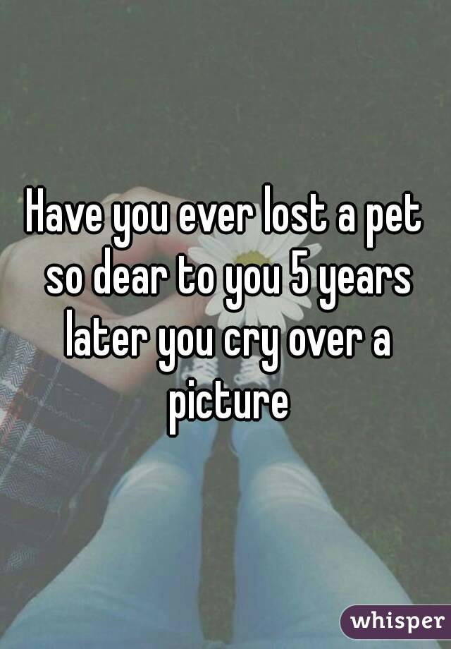 Have you ever lost a pet so dear to you 5 years later you cry over a picture