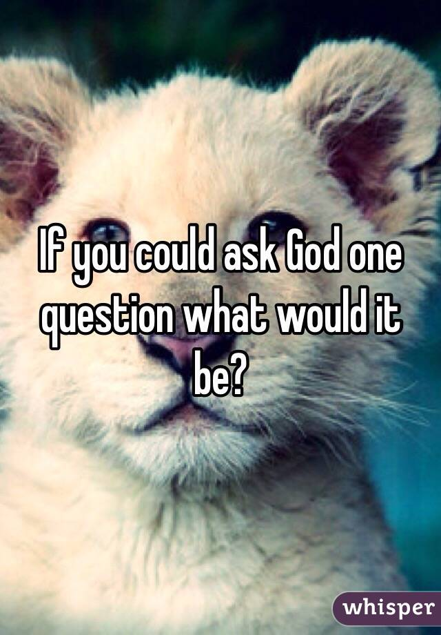 If you could ask God one question what would it be?