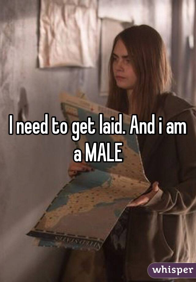 I need to get laid. And i am a MALE