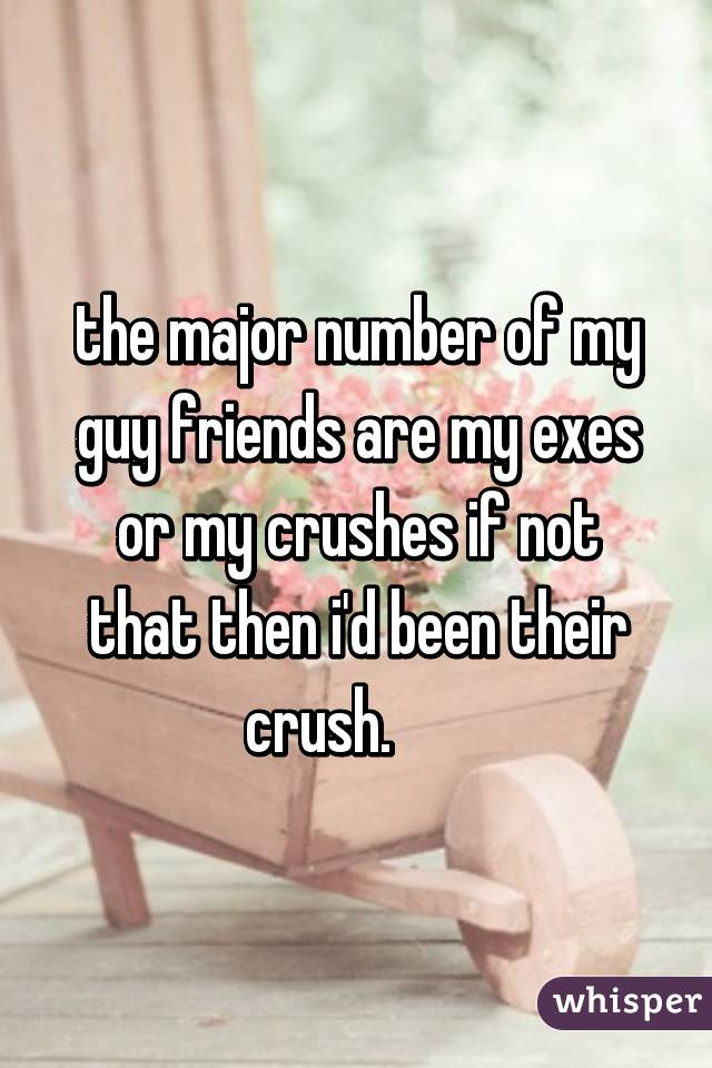 the major number of my guy friends are my exes or my crushes if not that then i'd been their crush.