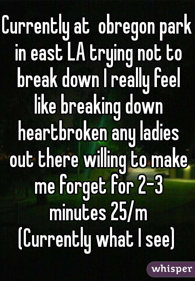 Currently at  obregon park in east LA trying not to break down I really feel like breaking down heartbroken any ladies out there willing to make me forget for 2-3 minutes 25/m (Currently what I see)