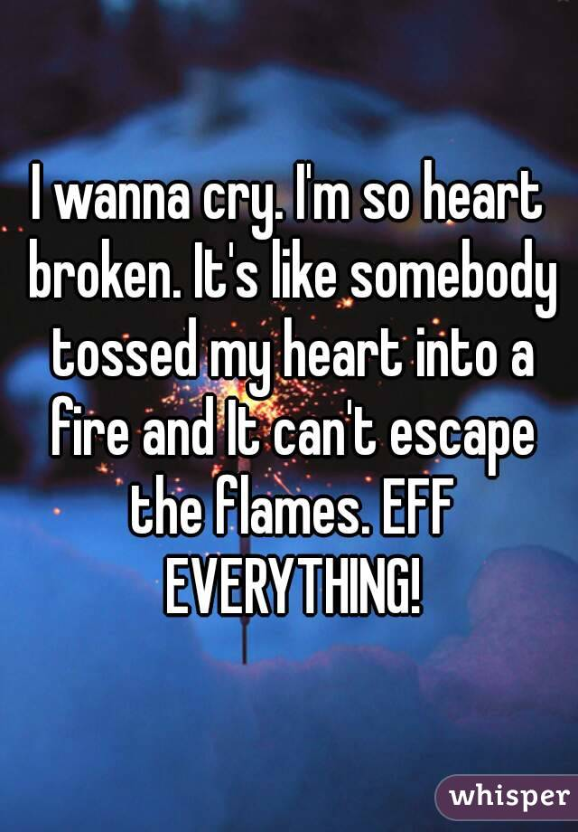 I wanna cry. I'm so heart broken. It's like somebody tossed my heart into a fire and It can't escape the flames. EFF EVERYTHING!
