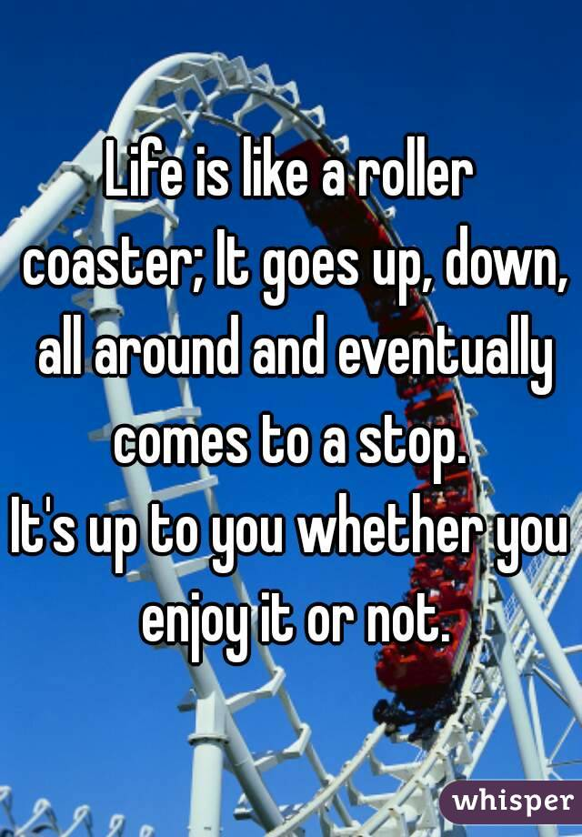 Life is like a roller coaster; It goes up, down, all around and eventually comes to a stop.  It's up to you whether you enjoy it or not.