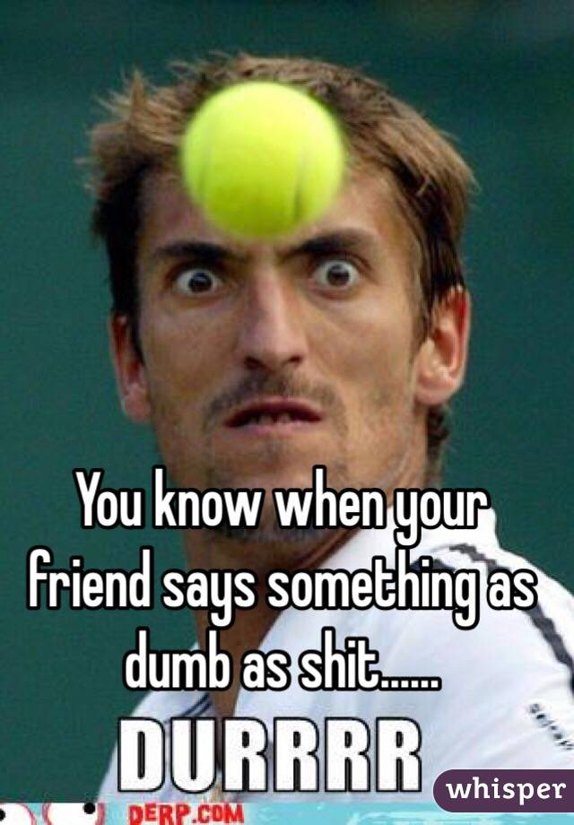 You know when your friend says something as dumb as shit......