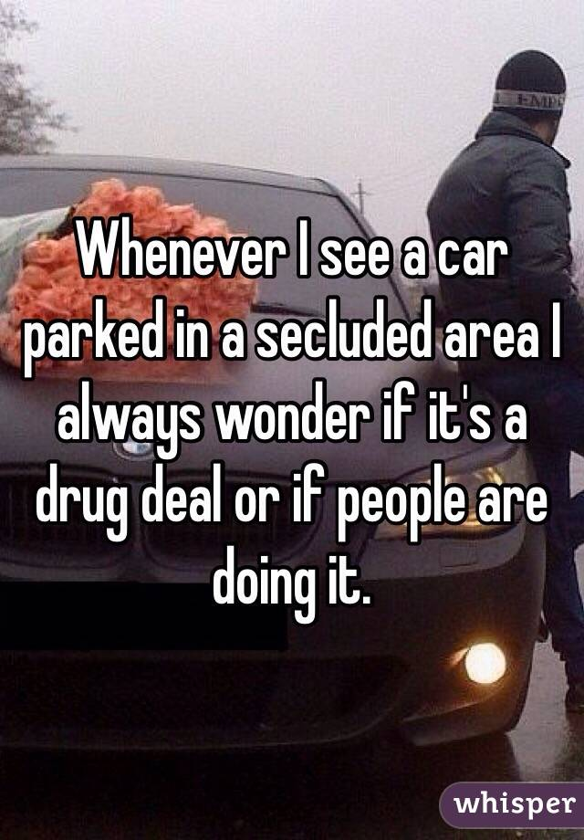 Whenever I see a car parked in a secluded area I always wonder if it's a drug deal or if people are doing it.