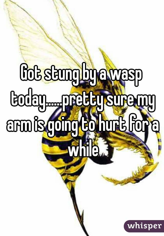 Got stung by a wasp today......pretty sure my arm is going to hurt for a while