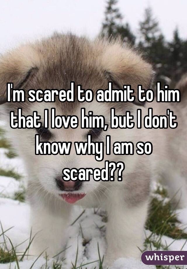 I'm scared to admit to him that I love him, but I don't know why I am so scared??