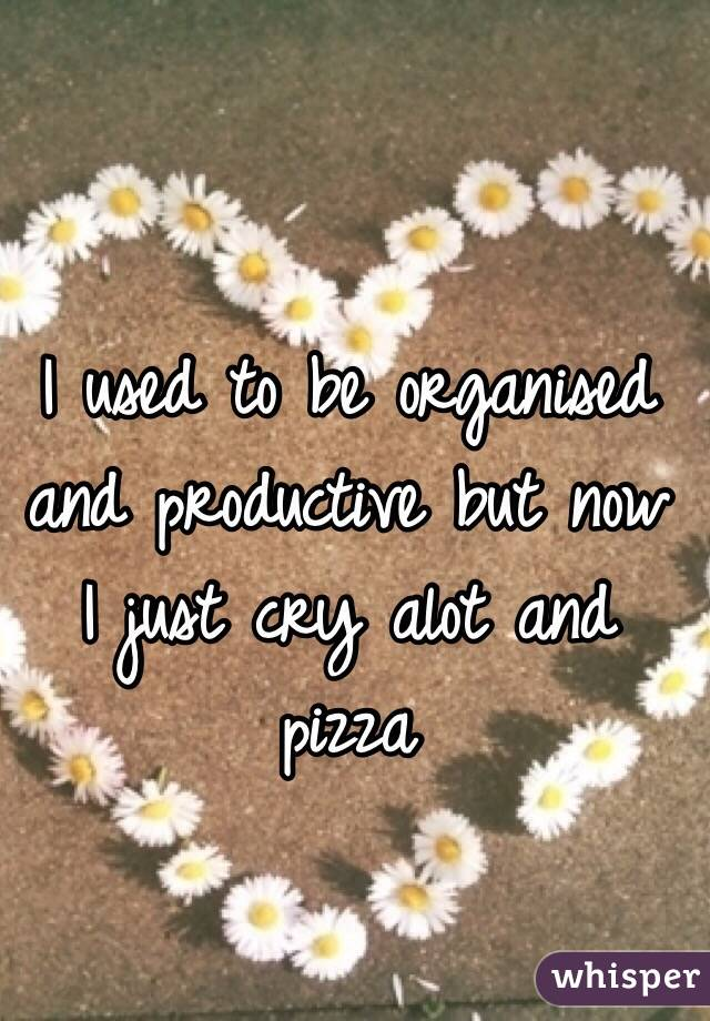 I used to be organised and productive but now I just cry alot and pizza