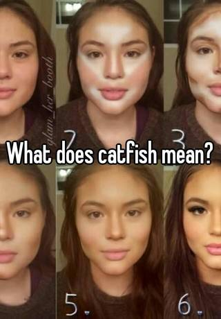 Meaning of catfished