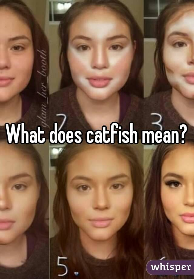 Whats catfished