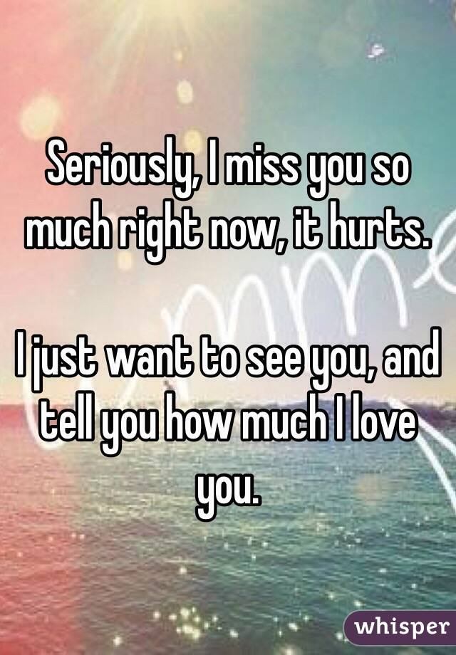 I Miss You So Much I Love You