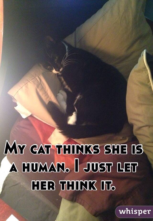 My cat thinks she is a human. I just let her think it.