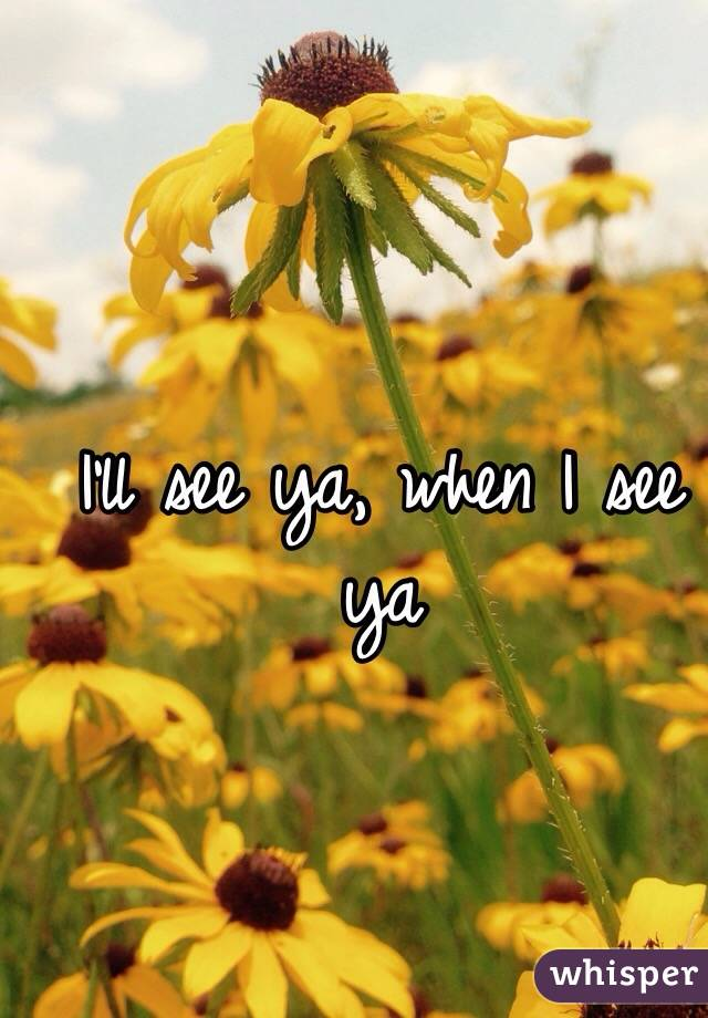 I'll see ya, when I see ya