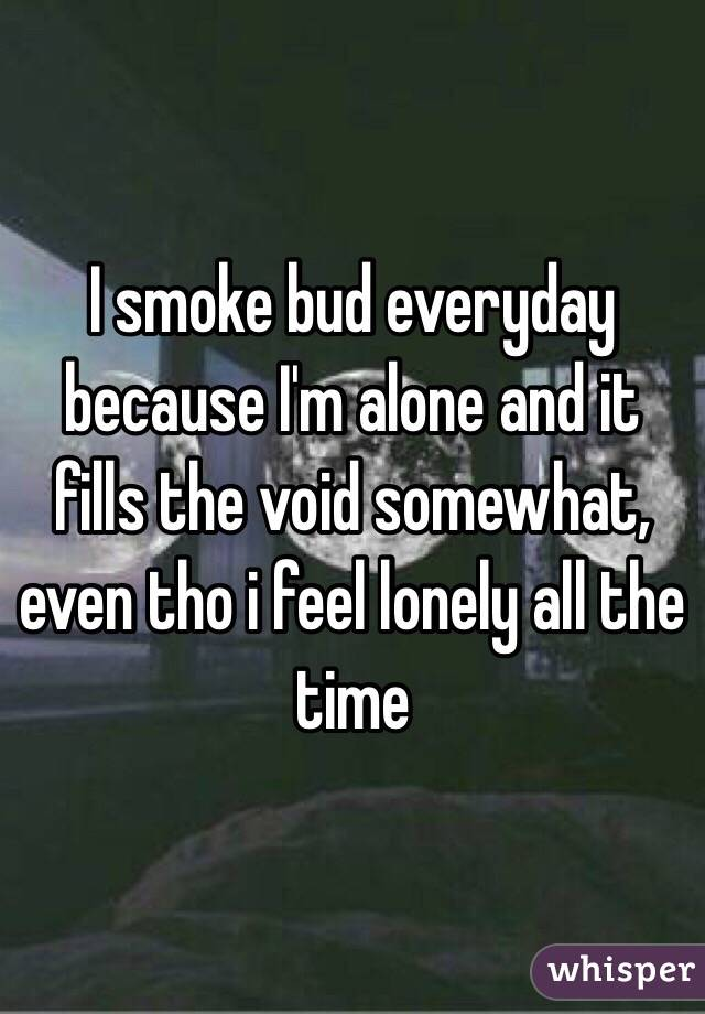 I smoke bud everyday because I'm alone and it fills the void somewhat, even tho i feel lonely all the time