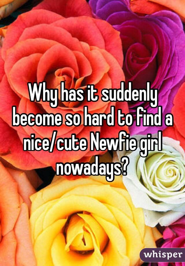 Why has it suddenly become so hard to find a nice/cute Newfie girl nowadays?