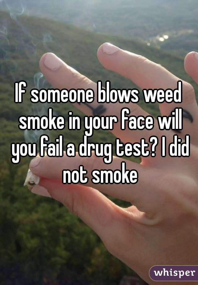 If someone blows weed smoke in your face will you fail a drug test? I did not smoke
