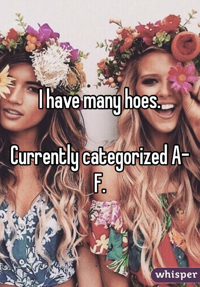I have many hoes.  Currently categorized A-F.
