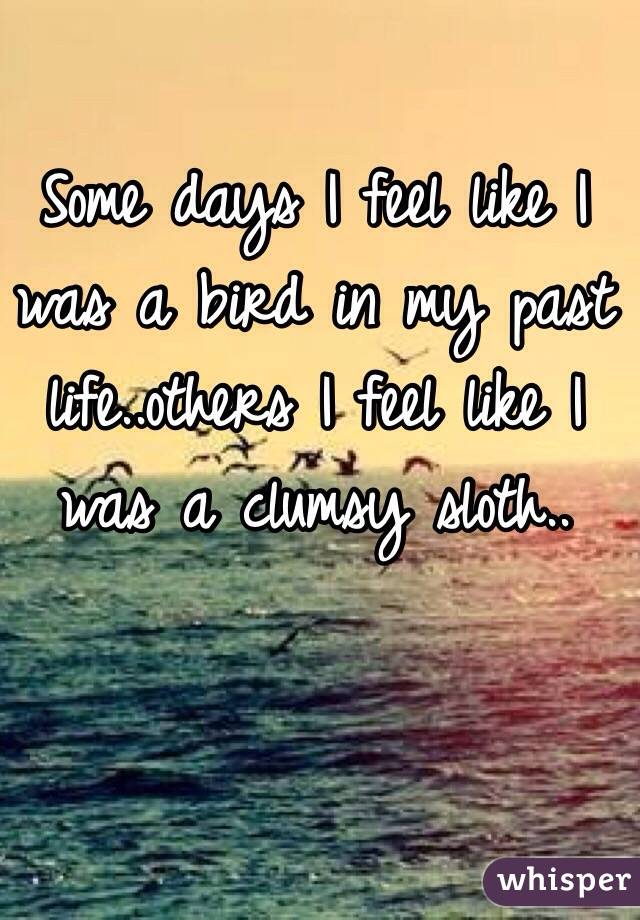 Some days I feel like I was a bird in my past life..others I feel like I was a clumsy sloth..