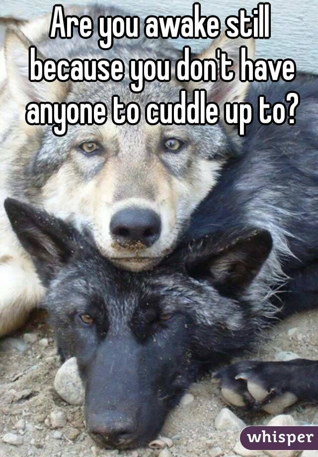 Are you awake still because you don't have anyone to cuddle up to?
