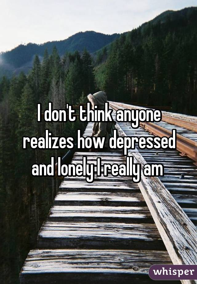 I don't think anyone realizes how depressed and lonely I really am