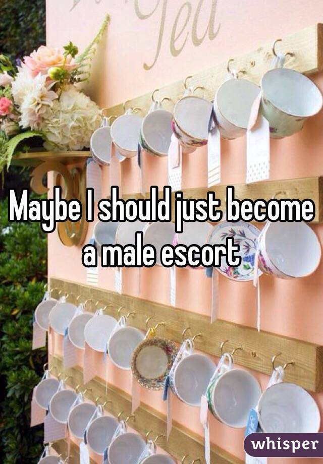Maybe I should just become a male escort