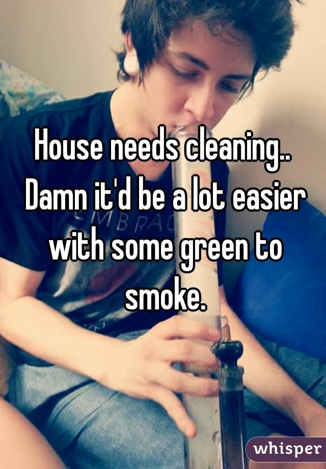 House needs cleaning.. Damn it'd be a lot easier with some green to smoke.