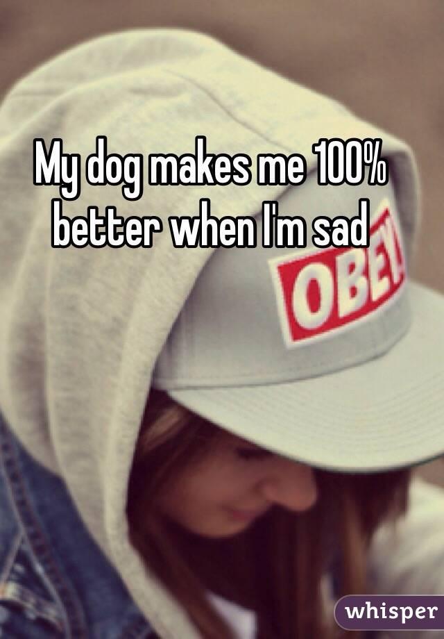 My dog makes me 100% better when I'm sad