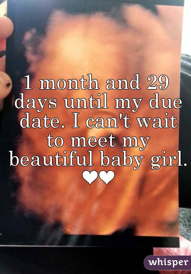 1 month and 29 days until my due date. I can't wait to meet my beautiful  baby girl.