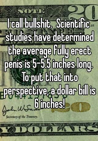 Scientific Stu S Have Determined The Average Fully Erect Is  Inches Long To Put That Into Perspective A Dollar Bill Is 6 Inches