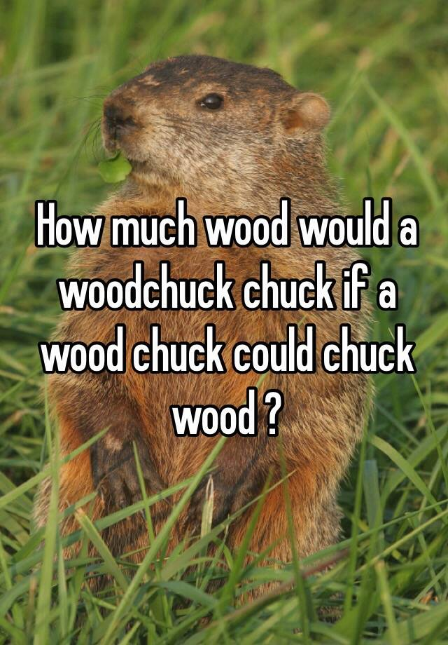 How much wood would a woodchuck chuck if a wood chuck ...