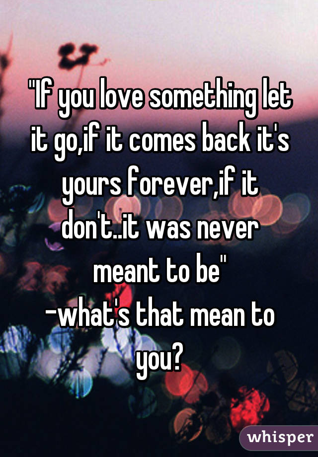 if you love something you have to let it go