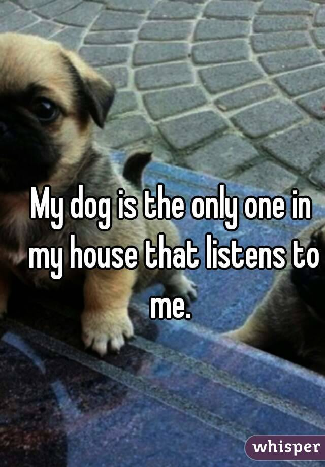 My dog is the only one in my house that listens to me.
