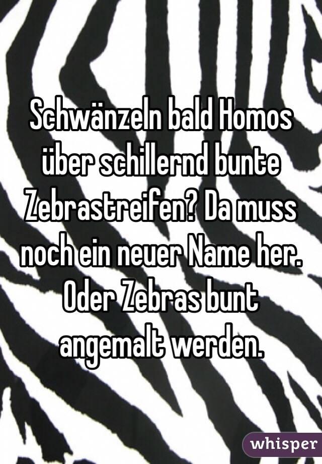 Schwänzeln bald Homos über schillernd bunte Zebrastreifen? Da muss noch ein neuer Name her. Oder Zebras bunt angemalt werden.