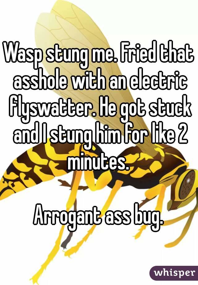 Wasp stung me. Fried that asshole with an electric flyswatter. He got stuck and I stung him for like 2 minutes.   Arrogant ass bug.