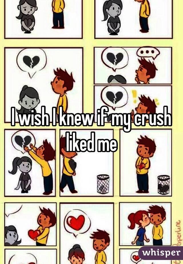 I wish I knew if my crush liked me